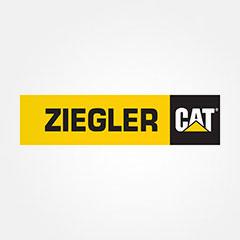 Ziegler Cat