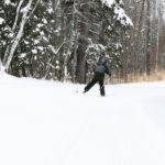 12-14-23 Skier